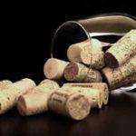 Cómo vender vino por internet. Estrategias y caso de éxito de marketing para bodegas
